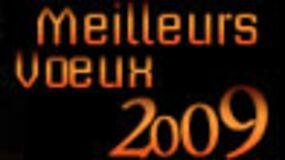 Bonne Année et meilleurs voeux pour 2009 !