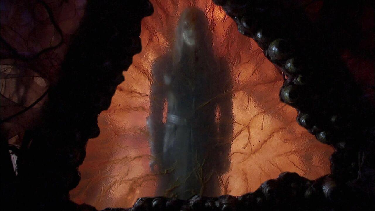 Chambre d'hibernation wraith