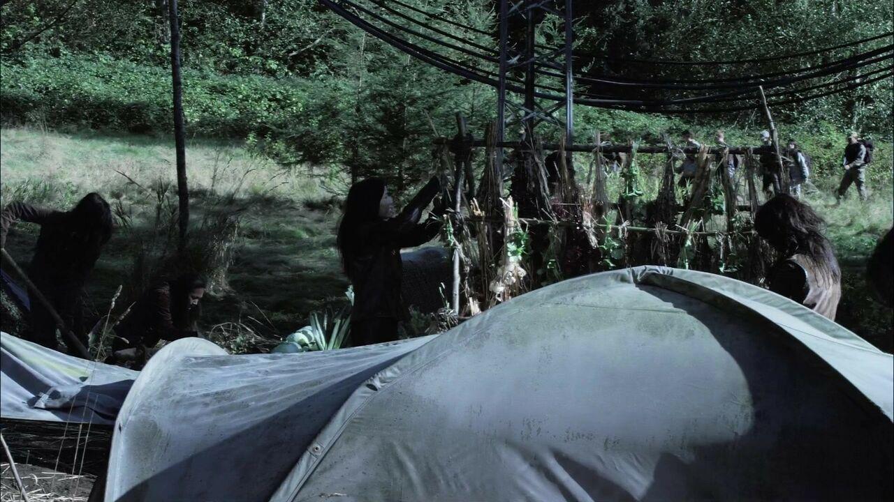 Campement novusien
