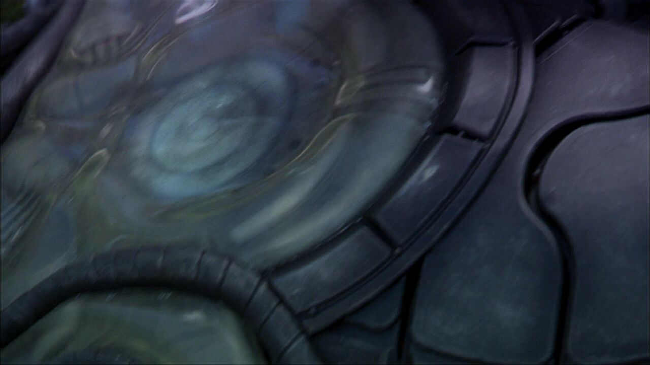 Dispositif d'autodestruction wraith