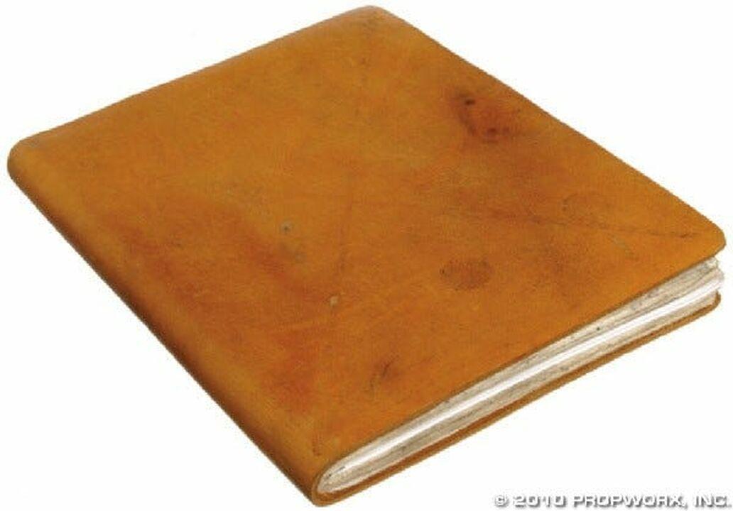 Journal de Daniel