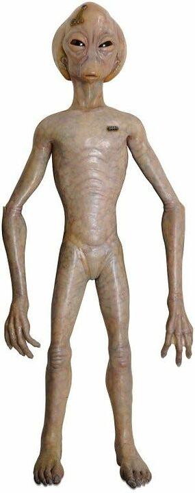Marionnette asgard (Vanir)